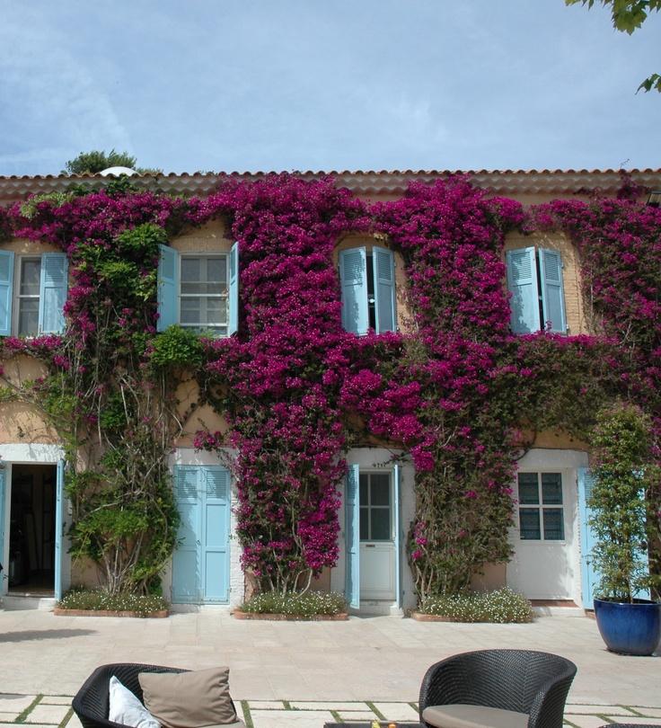 Porquerolles my favourite hotel & island