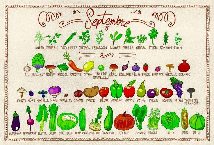 Conso septembre | Fruits et légumes de saison, Légumes de ...