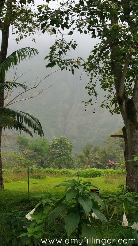 the 7 best things to do on the big island of hawaii big island hi rh pinterest com