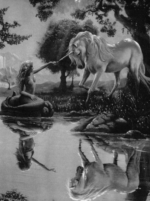 black and white, fantasy, mermaid, mermaids, unicorn