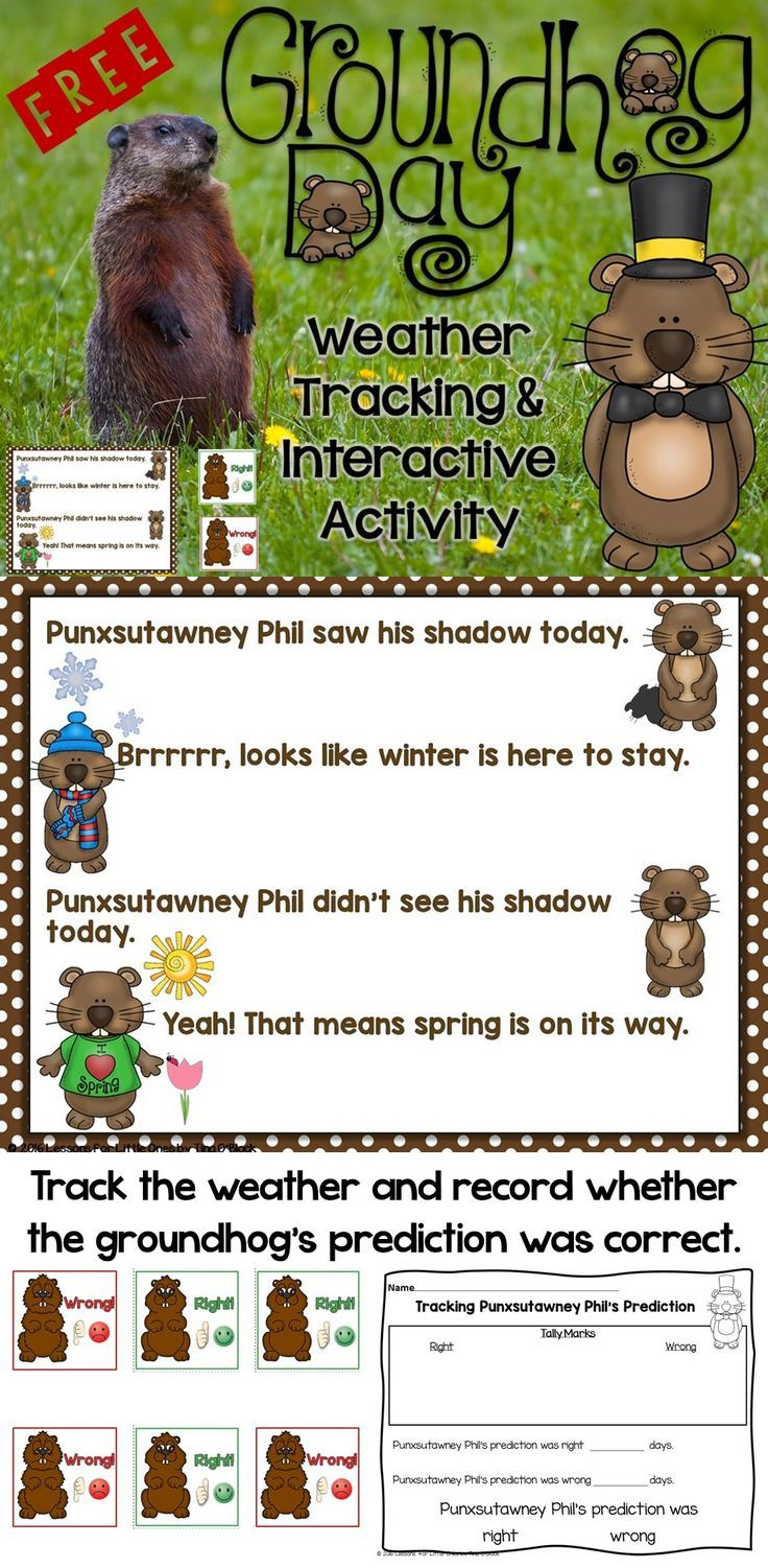 Was Punxsutawney Phil's weather prediction on Groundhog Day right? Keep track and find out with this free weather tracking activity that includes full-color cards, a cute Groundhog Day rhyme/poem, and a printable page. PLUS your students will have fun pretending to be Punxsutawney Phil giving his Groundhog Day prediction with a free app that is super simple to use.  https://lessons4littleones.com/2016/01/27/groundhog-day-freebie/