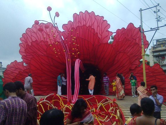 Red Hibiscus or China Rose or rose-mallo from Kolkata Durga puja festive