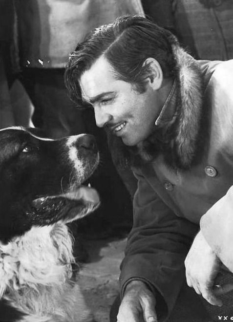 "Clark Gable (with 'Buck') in Jack London's, ""Call of the Wild"""