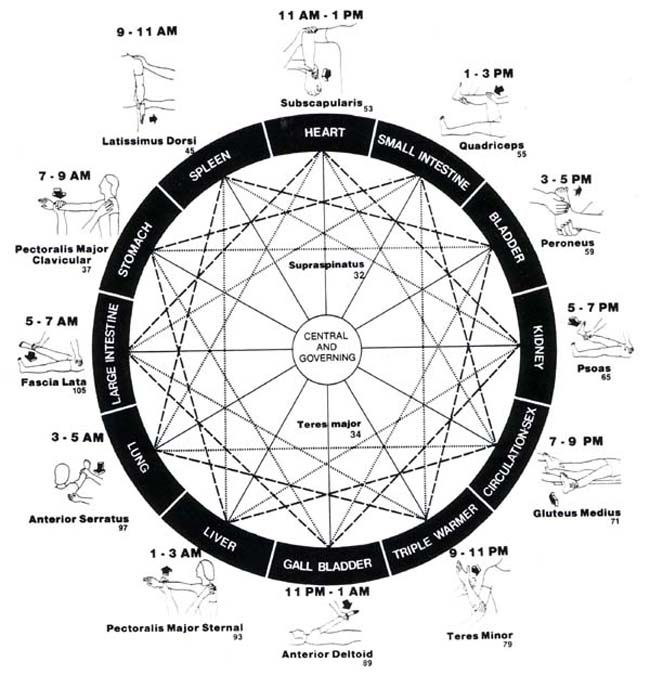 64 best images about 7  9  12  13 chakras system on pinterest