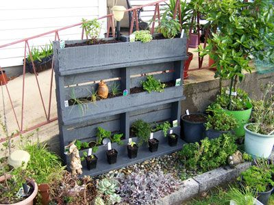 Pallet Project | Tui Garden... Different setting ideas