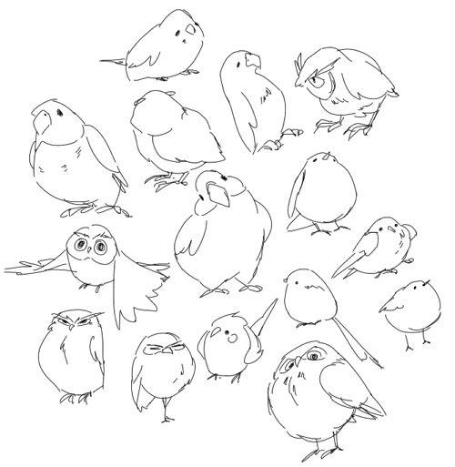 Les 89 meilleures images du tableau creature design parrots sur pinterest perroquets - Dessin calopsitte ...