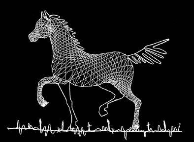Horse. Daniela Fitzkova