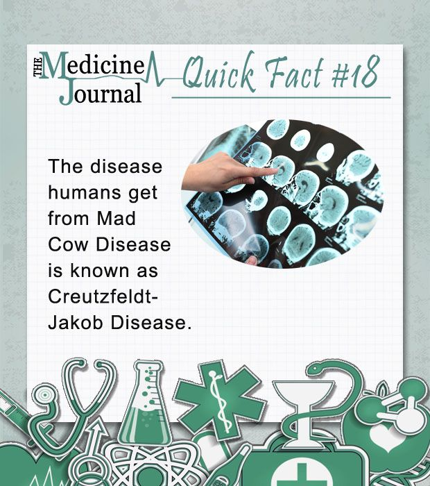Mad Cow Disease Facts