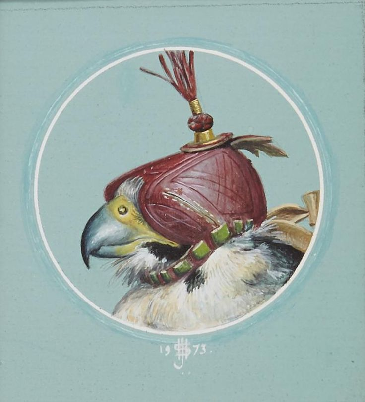 Kop slechtvalk - Falco peregrinus, 1973