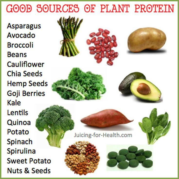 Protein Shakes Vs Natural Food