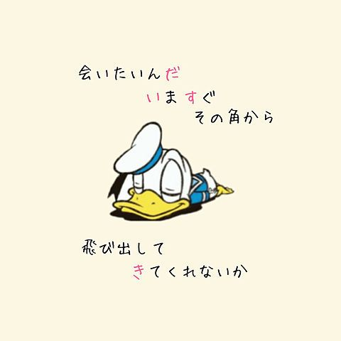 ドナルドダック#高嶺の花子さんの画像 プリ画像