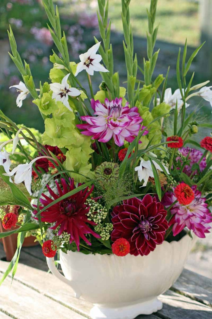 81 Best Seasonal Autumn Flowers Images On Pinterest 400 x 300