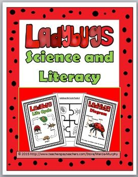 Invertebrates on Ladybugs Activities Printables Lessons Teaching Ideas