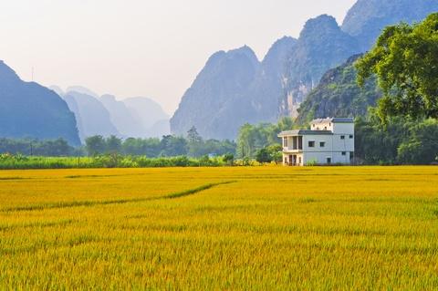 China, www.tripolin.com
