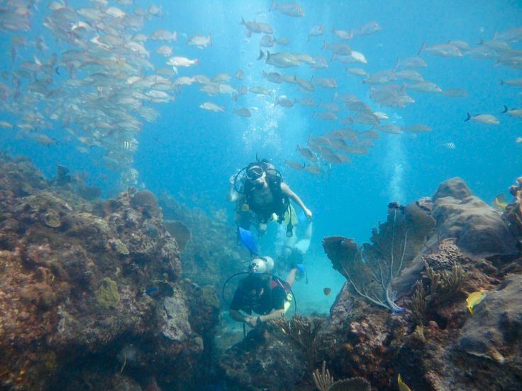 Scuba diving. Isla Mujeres. Mexico