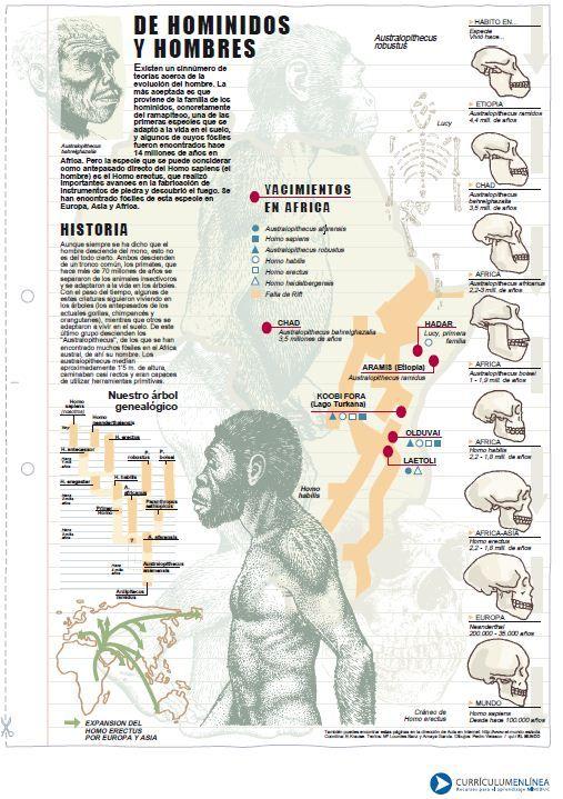 Historia de homínidos y hombres