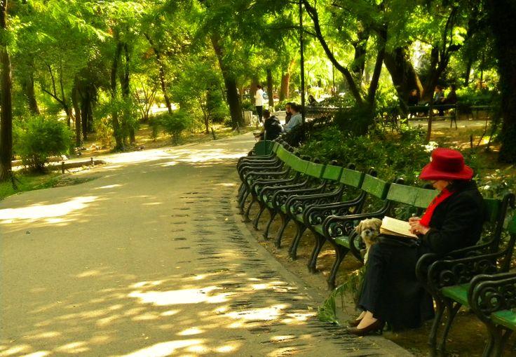 Bucharest Cismigiu Gardens