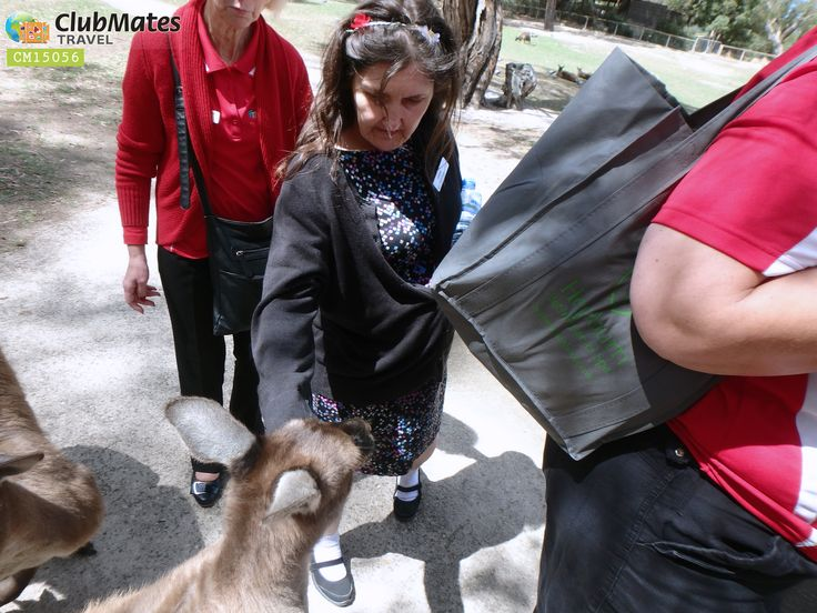 Clubmates member @ Ballarat Wildlife Park