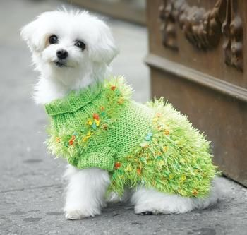 Party Turtleneck Dog Sweater FREE knitting pattern ... for the fashionable and bold canine