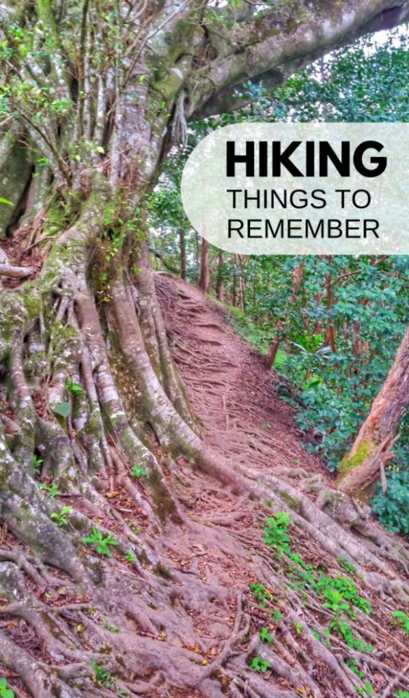 Mejores 5557 imágenes de Backpacking & Camping en Pinterest ...