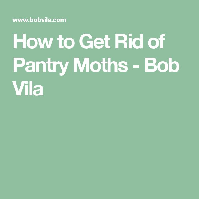 17 best ideas about pantry moths on pinterest moth repellent mosquito repellent clothing and