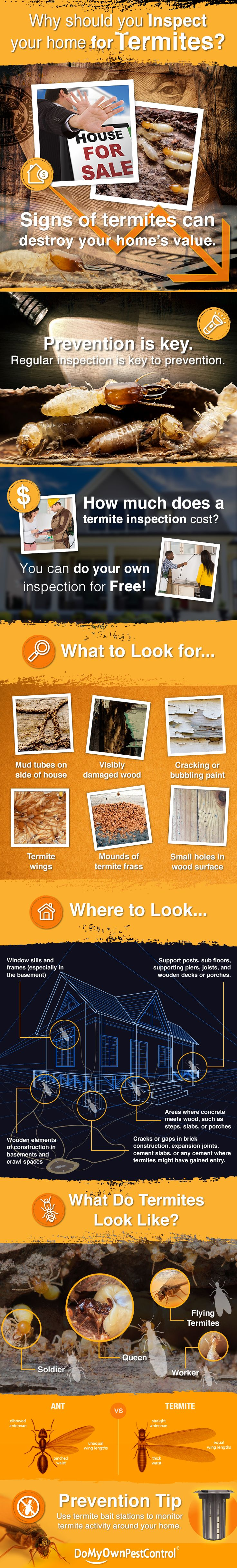 A termite infestation, or even just the signs of termites in or around your home can significantly damage your home's value! The best way to prevent termite damage is to inspect for them regularly and this graphic will show you how to do it yourself for free!