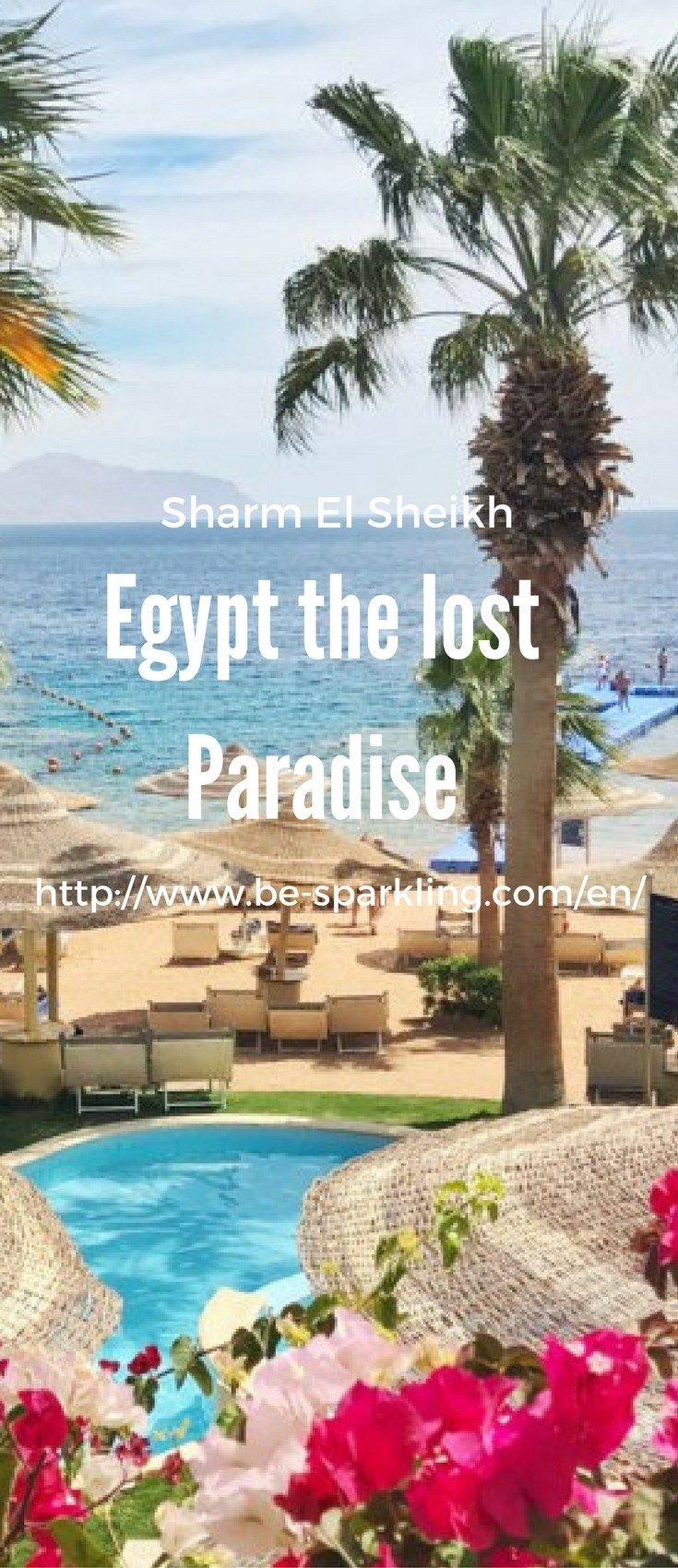 Sharm El Sheikh, Egypt, beach, palm tree, Royal Savoy Group, travel, travel blog, travel blogger