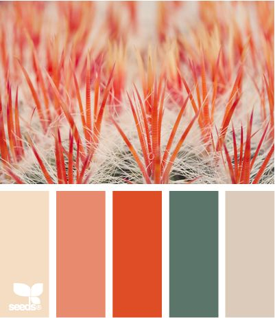 macro hues - never would have thought to put these colors together... which is why I love Design Seeds!