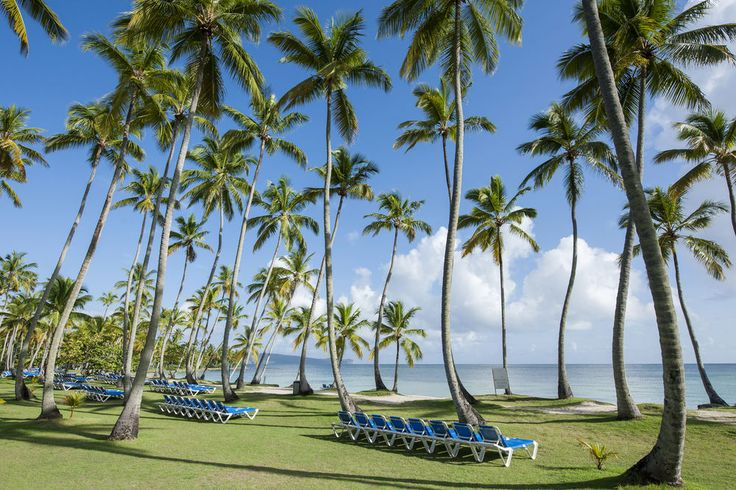 Grand Paradise Samana-an Amhsa Marina Resort-All Inclusive 3.0 out of 5.0