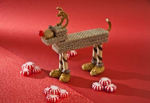 Galletas con forma de reno para servir en Navidad