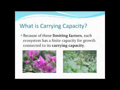 The idea of carrying capacity