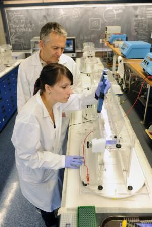 Scientists develop Atlantic fish DNA database with possible conservation and seafood fraud implications