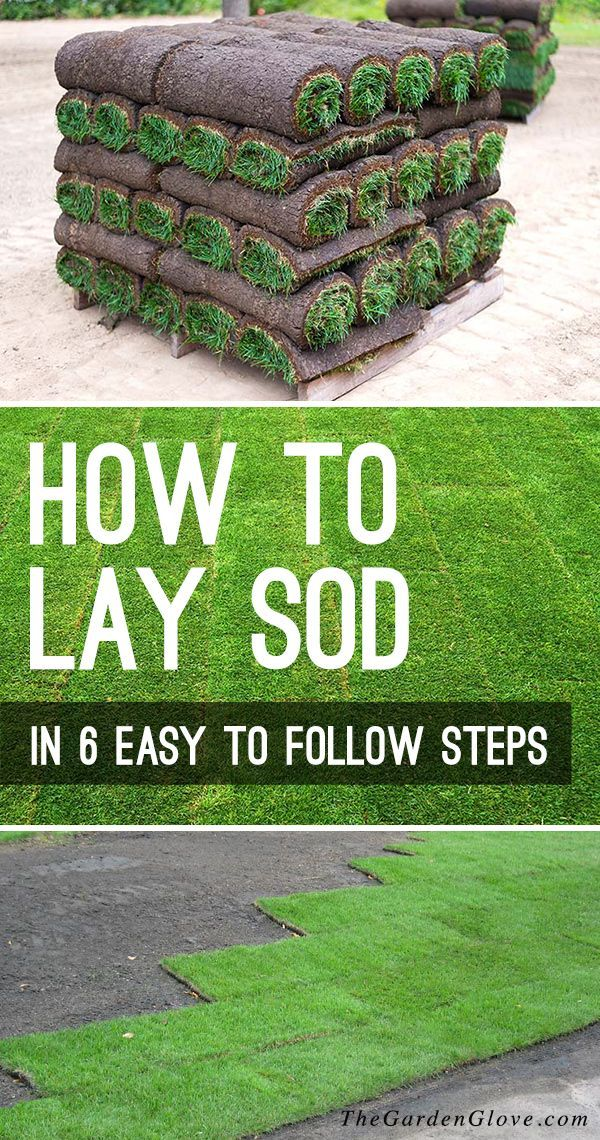 How To Lay Sod In 6 Easy Follow Steps Diy