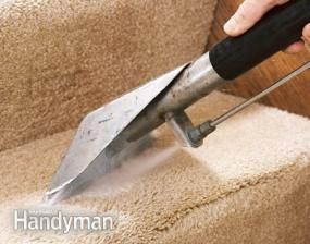 17 Best Ideas About Carpet Cleaning Companies On
