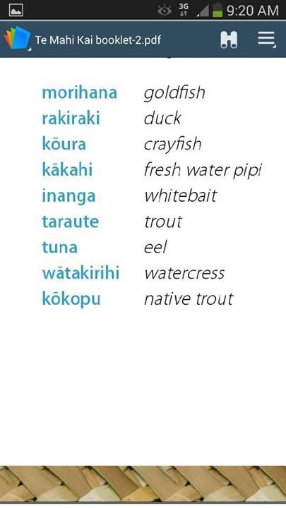 Maori vocabulary