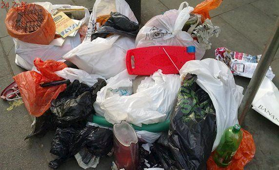 Lidé uklidili Česko. Odpadků ubylo, prokoukly i řeky a nádrže