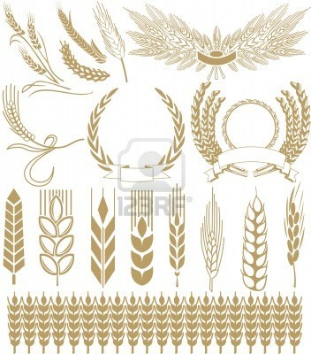 http://us.123rf.com/400wm/400/400/sash1977/sash19770810/sash1977081000013/3786750-wheat-ears.jpg