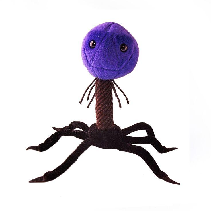 Bakteriofag T4 jest pluszakiem kolorem, kształtem i wyglądem przypominającym żywego wirusa atakującego bakterie. Jest od niego jednak znacznie większy – mierzy aż 23 cm.