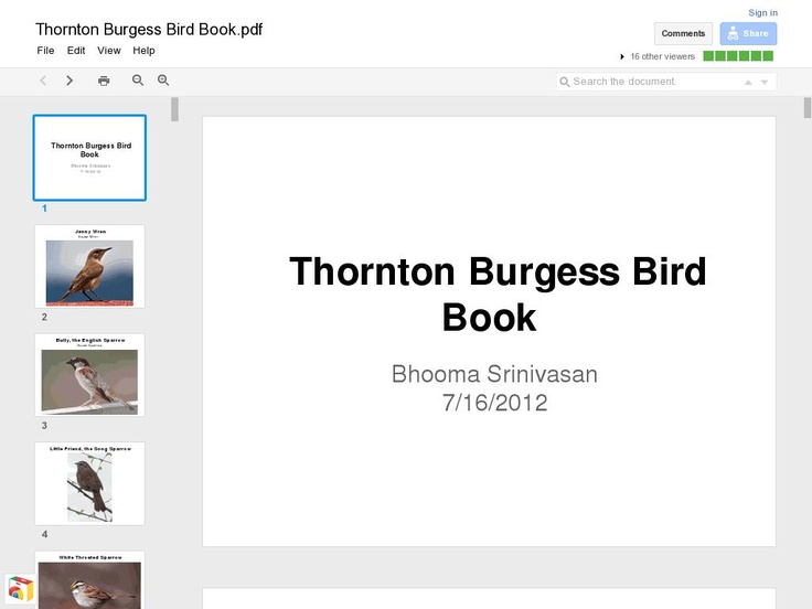 Google Doc Created By Bhooma With Full Color Photo Of Each Bird In Burgesss