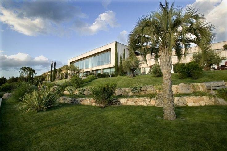 terrassierte Rasenflächer, Palmen und Stützmauern