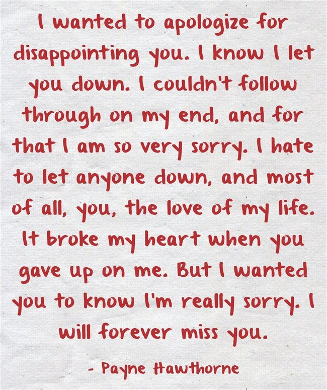 I wanted to apologize for disappointing you. I know I let you down. I couldn't follow through on my end, and for that I am so very sorry. I hate to let anyone down, and most of all, you, the love of my life. It broke my heart when you gave up on me. But I wanted you to know I'm really sorry. I will forever miss you.