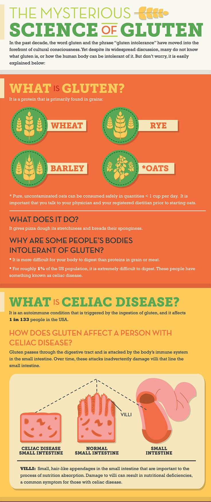 What is gluten and gluten intolerance. A helpful infographic!
