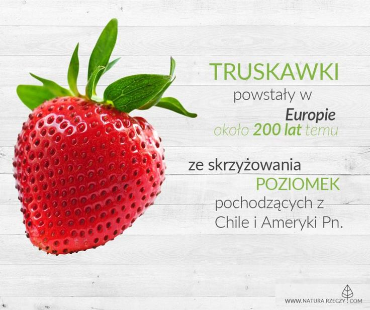 Właściwości zdrowotne truskawek