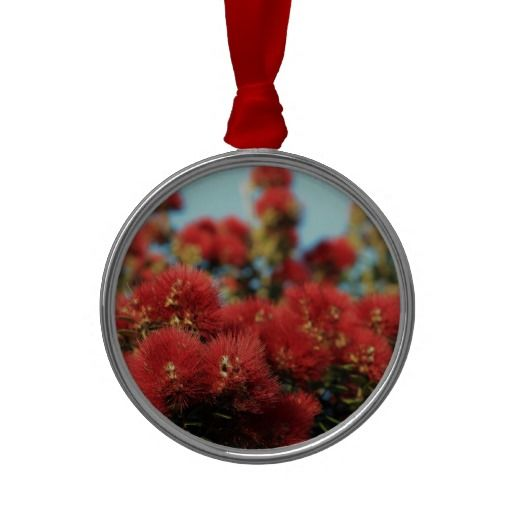 Red Pohutukawa tree summer flowers Ornament