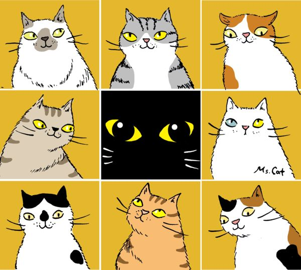 Cute cat illustrations by Ms. Cat 2