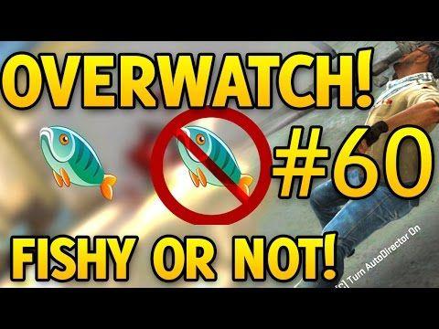CS GO Overwatch FISHY OR NOT FISHY Episode #60