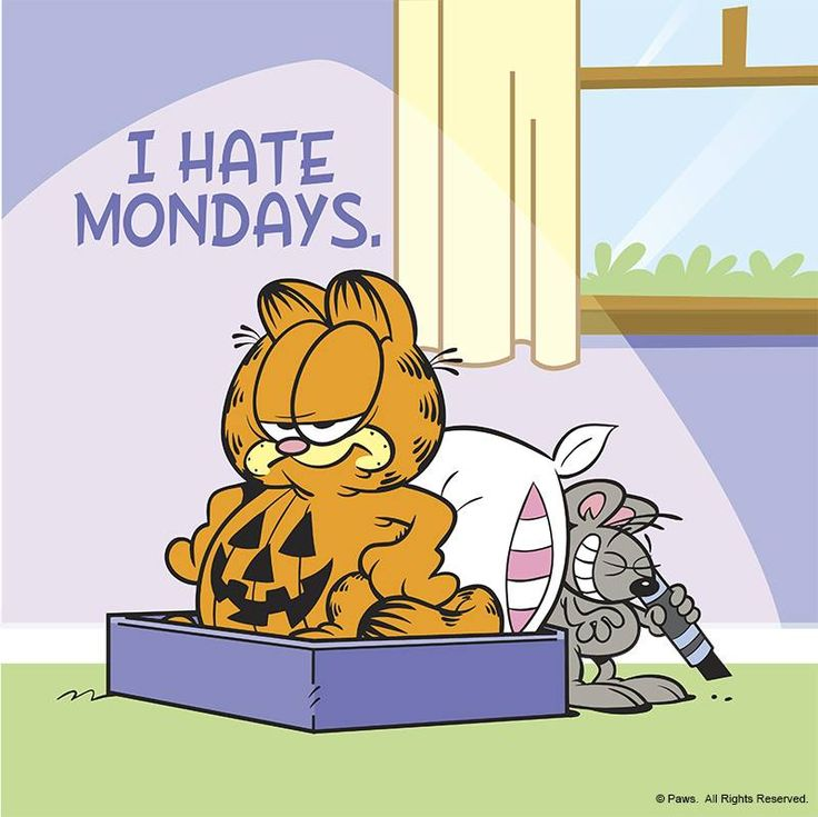 17 Best images about Garfield on Pinterest | Happy ...  I
