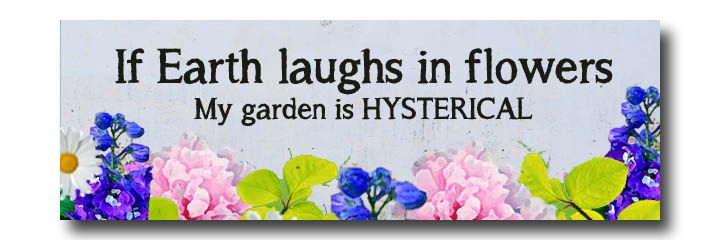 20+ Sweet and Funny Garden Signs for your garden  #spon