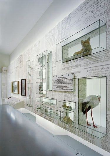 25 best ideas about museum display cases on pinterest