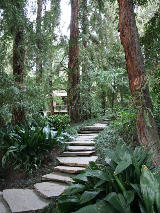 72 best images about garden gate and walkway on Pinterest